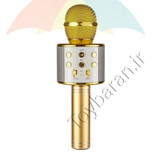 میکروفون فلش خور حرفه ای