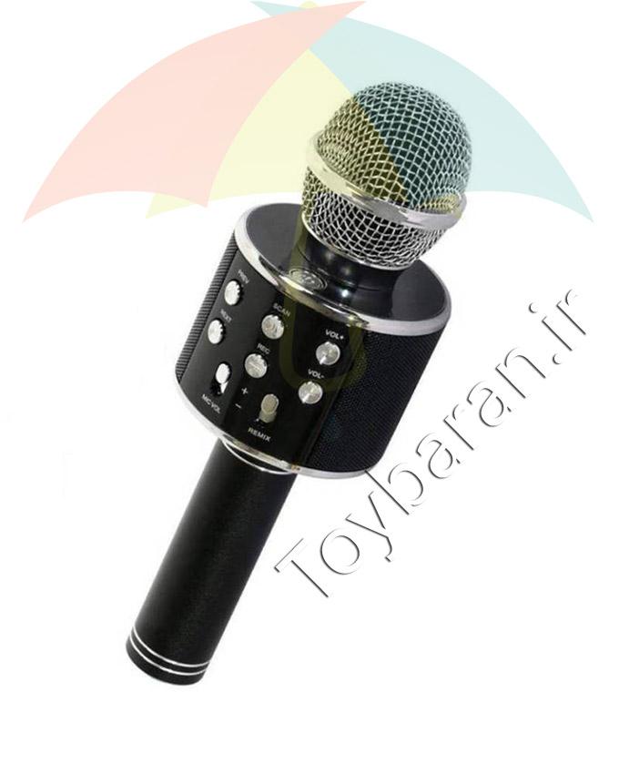 میکروفون حرفه ای شارژی
