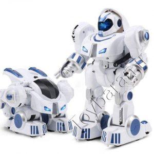 ربات کنترلی